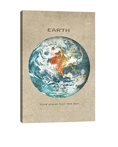 Terry Fan Earth Portrait Gallery-Wrapped Canvas Print