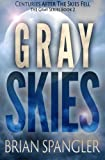 img - for Gray Skies (Volume 2) book / textbook / text book