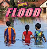 img - for Flood (It's a Disaster!) book / textbook / text book
