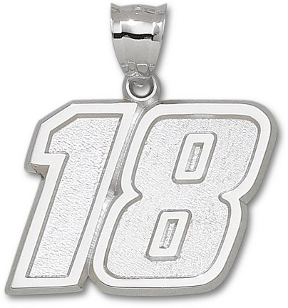 Kyle Busch Giant Driver Number