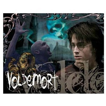 Cheap Hobbico Visual Echo 3D Effect Harry Potter Voldemort Fire 500pc Lenticular Puzzle (B000YB8FUM)