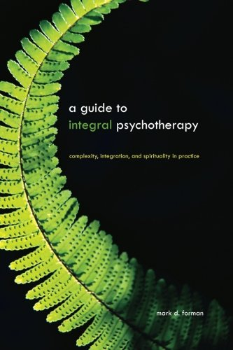 A Guide to Integral Psychotherapy: Complexity, Integration, and Spirituality in Practice (Suny Series in Integral Theory
