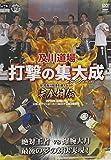 及川道場 打撃の集大成 -SHOOTaisei- 12・23及川知浩引退イベント 完全相伝[DVD]