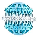 パピーズチョイス デンタルボール PZ70546 ライトブルー