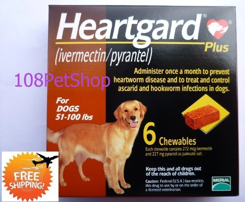 tomarosaki Review Heartgard Plus for Large Dogs 51 100 lbs 6