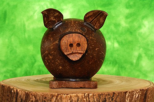 Unique Hand Crafted Coconut Shell Wood Pig Coin Piggy Bank - 1