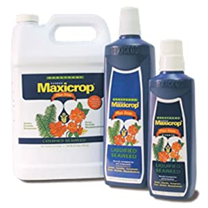 1 qt. - MaxiCrop Liquid Seaweed Plus Iron - Liquified Seaweed and Iron - Hydroponic Nutrient Solution - 0-0-1 NPK Ratio - MaxiCrop MCIRONQT