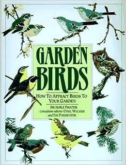 Garden Birds: How To Attract Birds To Your Garden: Noble ...