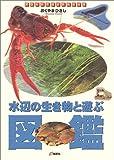水辺の生き物と遊ぶ図鑑 (アウトドアガイドシリーズ)