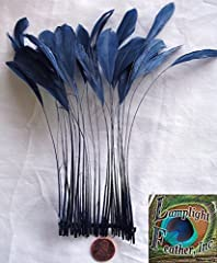 Stripped Coque Feathers, Pack of 25, MANY COLOR OPTIONS, Millinery and Crafts - by Lamplight Feather, Inc. (NAVY BLUE)