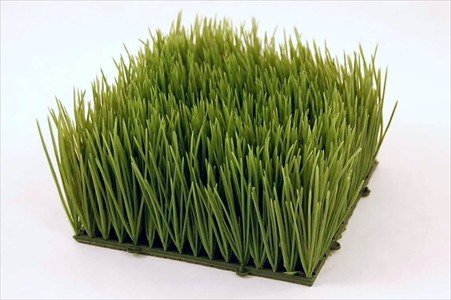 Artificial Wheat Grass- Fake Soft PVC Plastic Decorative Wheatgrass Ornamantal Flower Arranging  Home DecorB001D4AUU2 : image