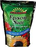 Pennington Epsom Salt, 7-Pound