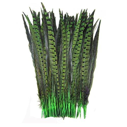 celine-lin-10pcs-natural-plumas-de-faisan-faisan-tails-14-16-pulgadas-verde
