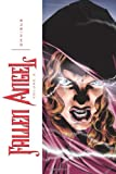 img - for Fallen Angel Omnibus Volume 2 book / textbook / text book