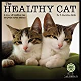 D. Caroline Coile Healthy Cat: A Year of Healthy Tips for Your Furry Friends