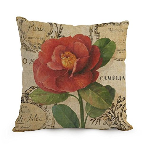 [Loveloveu Flower Art Pillow Covers ,best For Him,bedding,living Room,birthday,car Seat,home 12 X 20 Inches / 30 By 50 Cm(twice] (Oriole Bird Costume)