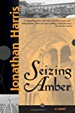 Seizing Amber (1402200102) by Jonathan Harris