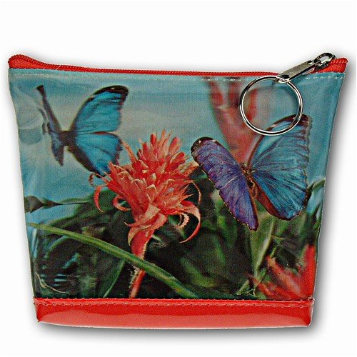 Lenticular Purse, 3D Lenticular Image, Butterfly and Flowers, I-003-Pavia - Buy Lenticular Purse, 3D Lenticular Image, Butterfly and Flowers, I-003-Pavia - Purchase Lenticular Purse, 3D Lenticular Image, Butterfly and Flowers, I-003-Pavia (Lantor, Apparel, Departments, Accessories, Wallets, Money & Key Organizers, Billfolds & Wallets)