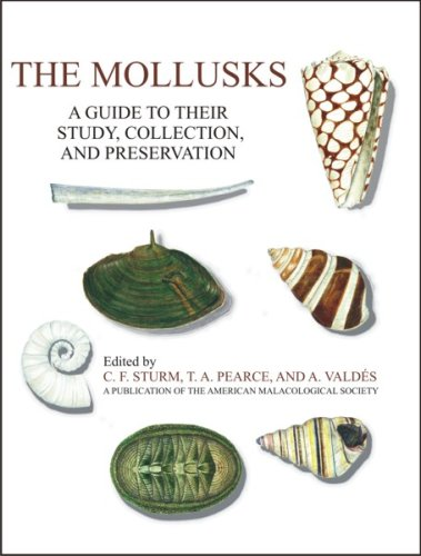 The Mollusks: A Guide to Their Study, Collection, and Preservation