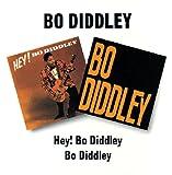 echange, troc Bo Diddley - Hey! Bo Diddley/ Bo Diddley