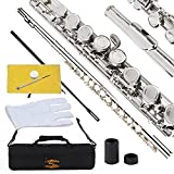 Glory Closed Hole C Flute With Case, Tuning Rod and...