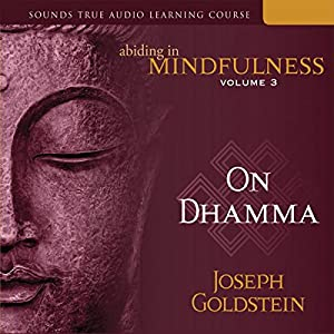 Abiding in Mindfulness, Vol. 3 Hörbuch