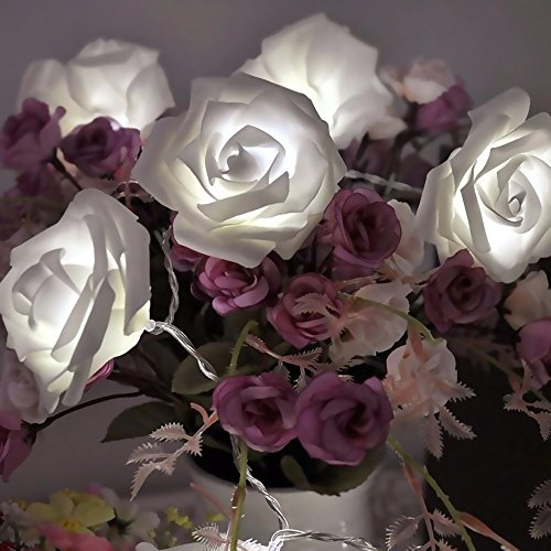 HKBAYI 20led Rose Flowers String Lights Battery Powered Clear Cable Bedroom Decoration for Wedding Party girl Birthday Gift Chrismas (White)