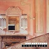 Cherry Tree EP [VINYL] The National