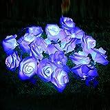 Homdox 2M 20 LED Seasonal Decoration Rose Flower Fairy String Lights for Wedding Christmas Holiday Party Decor valentine lights string (Blue)