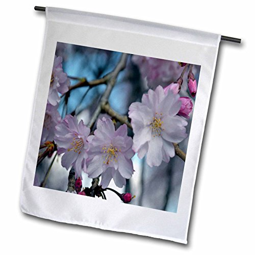 WhiteOak Photography Floral Prints - Cherry Blossom Tree - 18 x 27 inch Garden Flag (fl_45340_2)
