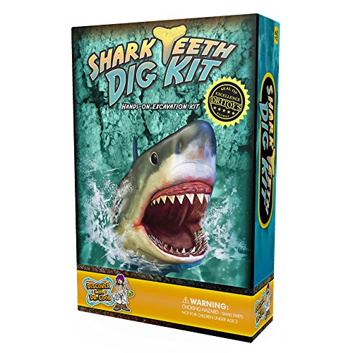 shark-tooth-dig-kit-ritrova-3-veri-denti-di-squalo