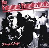 echange, troc Fabulous Thunderbirds - Powerful Stuff