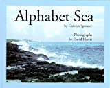 Alphabet Sea