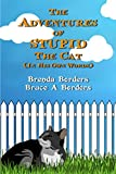 The Adventures Of Stupid The Cat