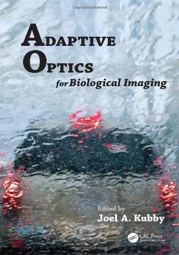 Adaptive Optics For Biological Imaging