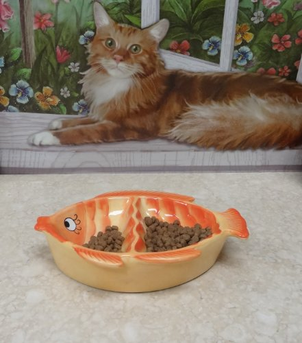 Pet Bowl Ceramic Double Cat Feeder Orange Fish Shape, 80563 By Ack 4.8.7.3 back-602564