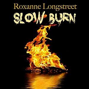 Slow Burn Audiobook