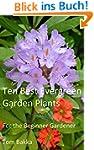 10 BEST EVERGREEN GARDEN PLANTS: For...