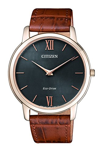 Citizen-Men's Watch-AR1133-15H