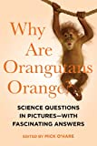 Mick O`hare Why Are Orangutans Orange?: Science Questions in Pictures--With Fascinating Answers
