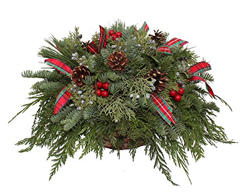 Fernhill Holly Farm Advantage Berries and Bows Centerpiece (Holiday Table Centerpieces compare prices)