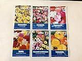 BORDER & BEDDING COLLECTION - Impatiens, Candytuft, Limnanthes, Mesembryanthemum, Dahila & Calendula