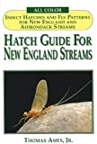 Hatch Guide For New England Streams: Insect Hatches And Fly Patterns For New England And Adirondack Streams