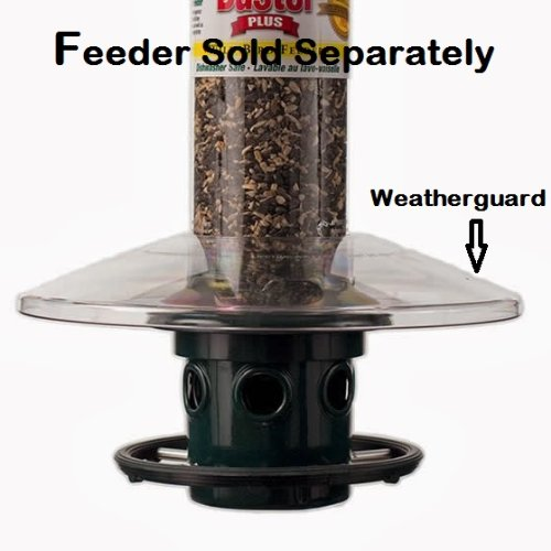 Squirrel Buster Plus Weather Guard for Bird Feeder