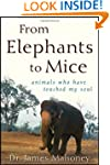 From Elephants to Mice: Animals Who H...
