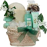 Art of Appreciation Gift Baskets Medium Jasmine Renewal Spa Bath and Body Set