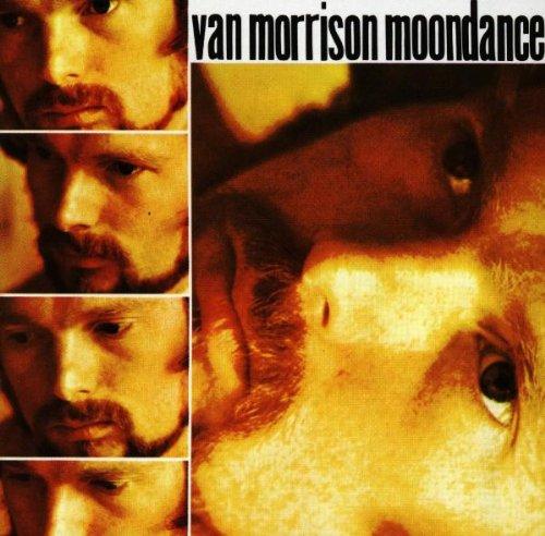 Still Into You Album Cover