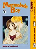Marmalade Boy, Vol. 8