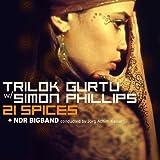 echange, troc Trilok Gurtu, Simon Phillips, Ndr Bigband - 21 Spices