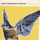 echange, troc Jimmy Chamberlin - Life Begins Again